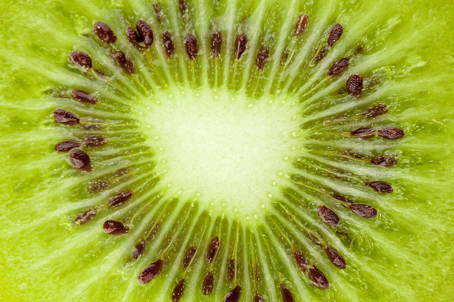 XXL Stoffbild Close Up Kiwi